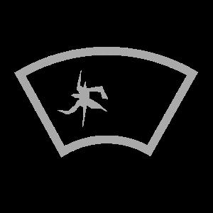 Servicio de parabrisas